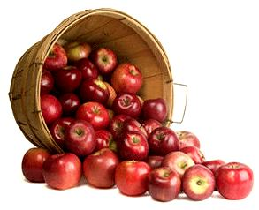 apple_bushel