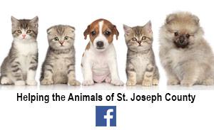 helping-animals