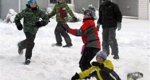 Michigan Snow Days